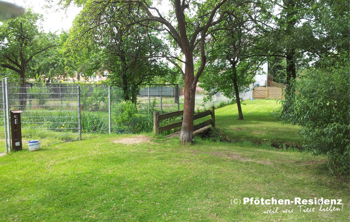 hundepension hannover